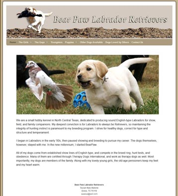 Bear Paw Labrador Retrievers Website by CityCenter Co.